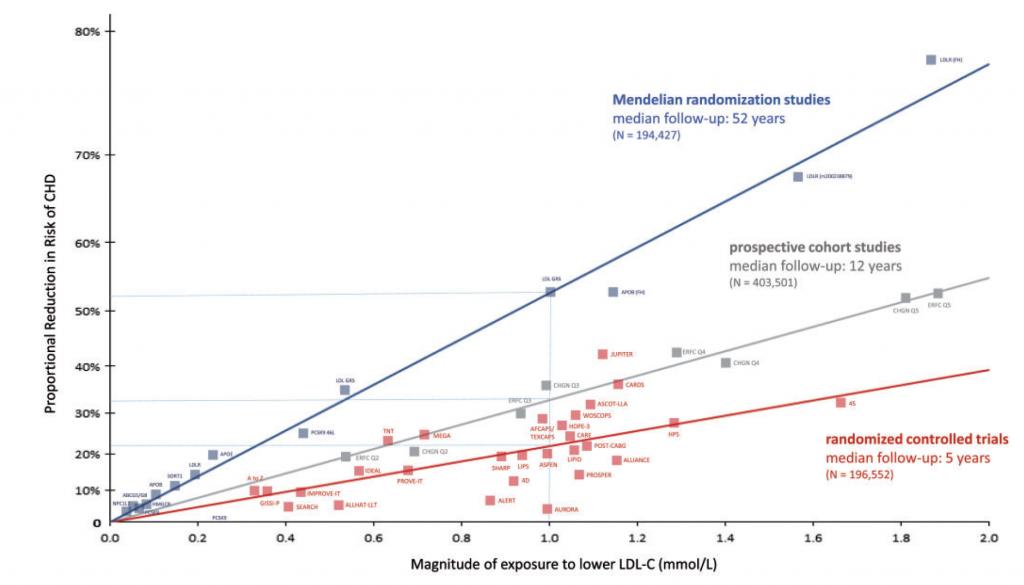 samband mellan högt blodtryck och stroke
