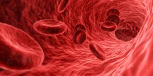 halsartärsjukdom-diabetes-blodkärl