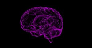 Alzheimers demens åldrande minnesproblematik diabetes